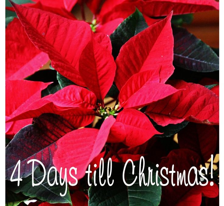 Christmas Countdown 2017 – Thursday December 21 is number 4
